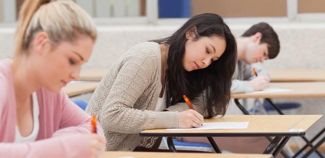 student essays website